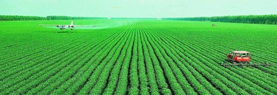 粮食种植新建实验室检测项目及仪器方案